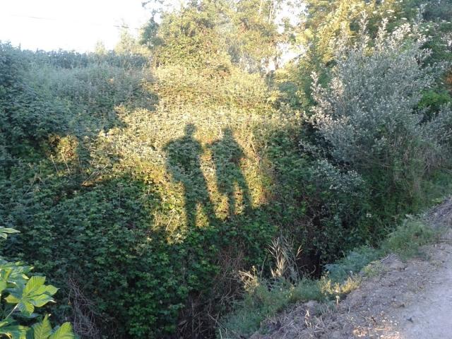En la mañana, dos peregrinos vamos de Tosantos a Atapuerca [08-06-2016]